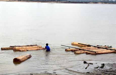Phát hiện nhiều bè gỗ để dưới cầu Câu Lâu bắc qua sông Thu Bồn