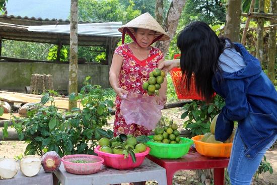Đại Bình, mùa trái cây cuối vụ