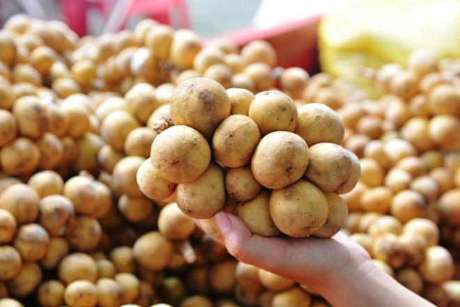 Trái Bòn Bon của Quảng Nam vào danh sách bầu chọn Top các đặc sản tiến vua nổi tiếng Việt Nam